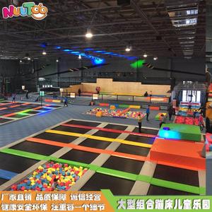 室内大型蹦床乐园 成人儿童组合滑梯厂家